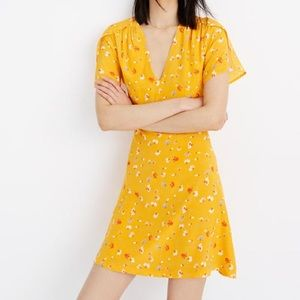 Madewell Silk Belladonna Dress